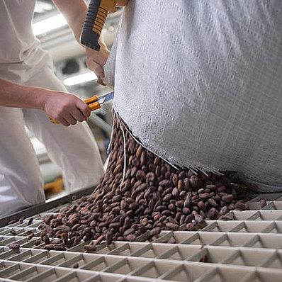 bean to bar process